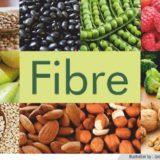 fibre3