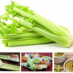 """Alimenti a """"calorie negative"""": il sedano ed i suoi compari"""